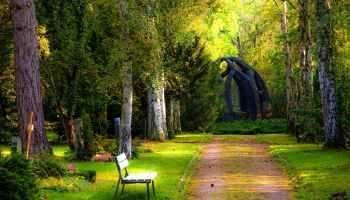 Samotna, pusta ławka, przy alejce w parku