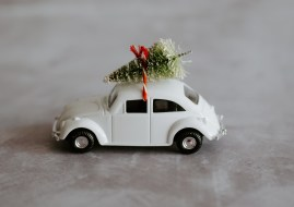 annie-spratt-jPfsYM-6Bcw-unsplash tree on a car