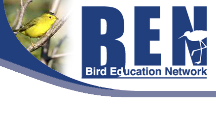 Birds Education Network