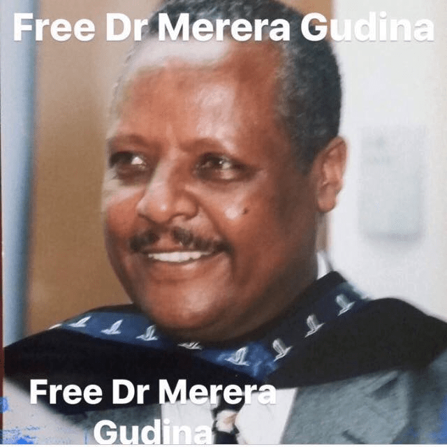 Image result for Merera Gudina
