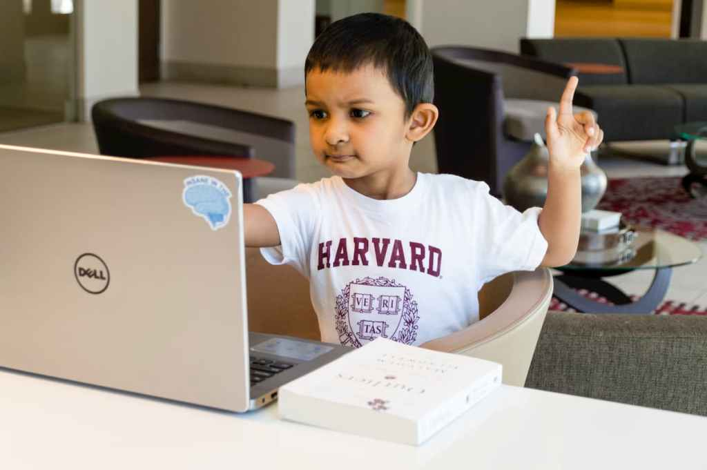 Child in Harvard t-shirt looking at a laptop.