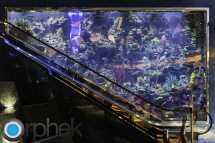 Burj Al Arab Aquariums Orphek
