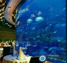 Burj Al Arab Restaurant Aquarium