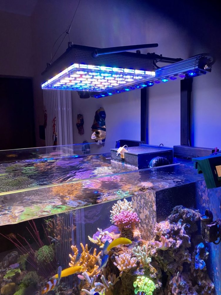 Reef Aquarium LED Lighting • Orphek Reef Aquarium LED Lighting
