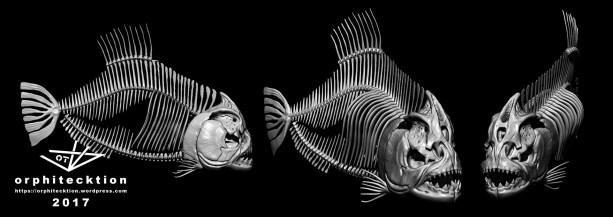 fishbones_a_construction