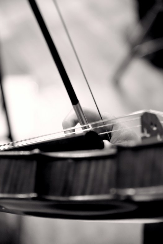 https://i0.wp.com/orquestatutti.com/wp/wp-content/uploads/2017/05/DSC_0010_23_23.jpg?w=525
