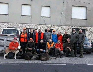 42 Jabalíes cobrados en los Cotos de la Comarca en las últimas Batidas