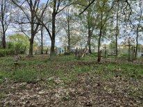 Tak wyglądał cmentarz w Sosnowicy po zakończeniu prac