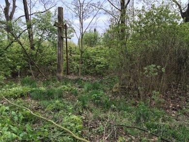 Tak wyglądał cmentarz w Sosnowicy na początku