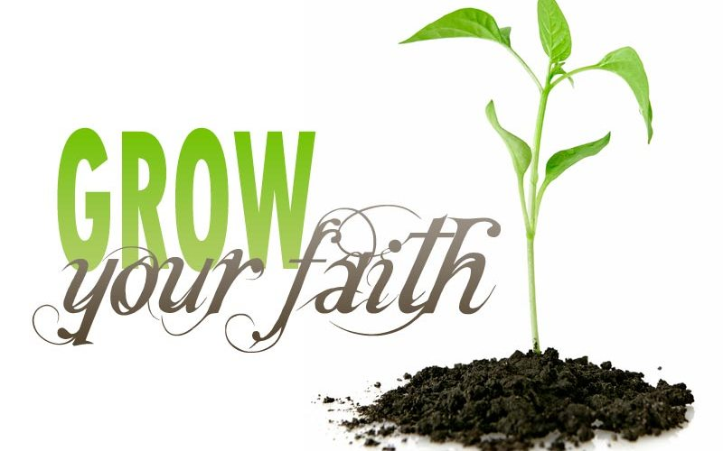 Grow Your Faith