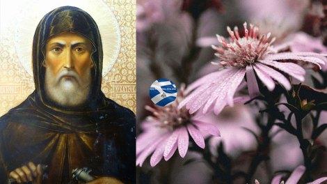 Ο Αγιορείτης Άγιος που εορτάζει σήμερα, Όσιος Ακάκιος ο Καυσοκαλυβίτης