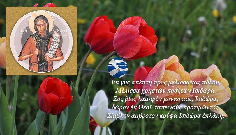 Οσία Ισιδώρα η δια Χριστόν Σαλή - Γιορτάζει σήμερα 1 Μαΐου