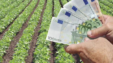 Ελλάδα | Πιστώνονται σταδιακά από αύριο οι επιδοτήσεις των αγροτών