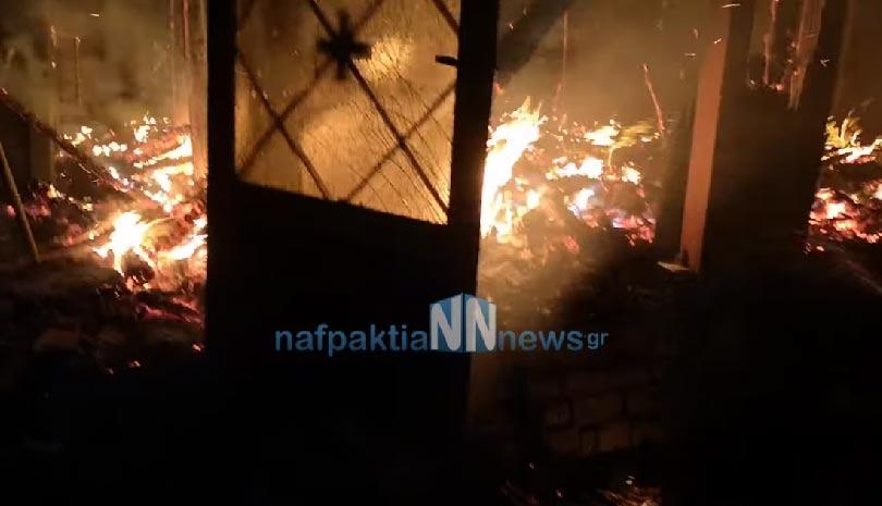 Πυρκαγιά στην Ιερά Μονή Βαρνάκοβας: Καταστράφηκε η θαυματουργή εικόνα της Παναγίας Βαρνάκοβας