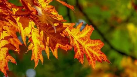 Ο καιρός σήμερα Σάββατο 3 Οκτωβρίου