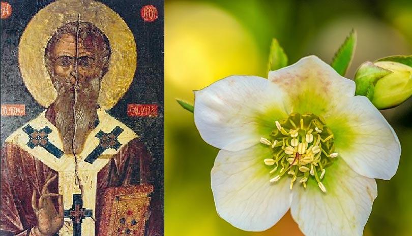 Σήμερα 22 Φεβρουαρίου γιορτάζει ο Άγιος Αρίστων ο θαυματουργός, επίσκοπος Αρσινόης Κύπρου