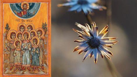 Σήμερα 22 Φεβρουαρίου γιορτάζουν οι Άγιοι Εννέα Μάρτυρες της Κολά εν Γεωργία