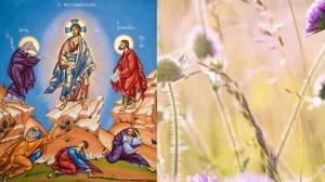 B΄ Κυριακή των Νηστειών | Θαύμα που έγινε με νηστεία, προσευχή και πίστη
