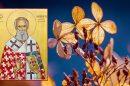 Γιορτή σήμερα 2 Μαρτίου Άγιος Θεόδοτος – Εορτολόγιο 2021