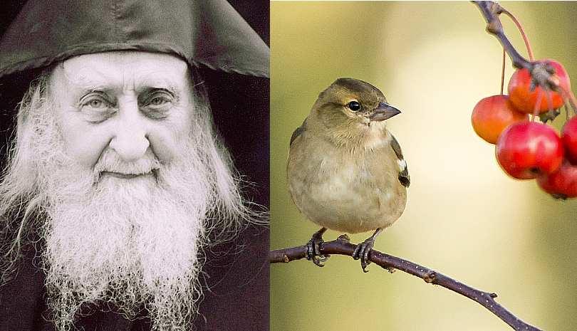 Άγιος Σωφρόνιος ο Αγιορείτης: Πως ετοιμαζόμαστε για το Πάσχα