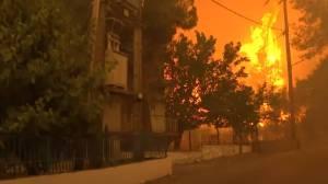 Φωτιά στην Εύβοια | Στο Πευκί η πύρινη λαίλαπα