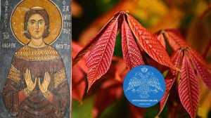 Εκκλησιαστική γιορτή σήμερα 4 Οκτωβρίου 2021 Όσιος Ιωάννης ο Λαμπαδιστής ο θαυματουργός