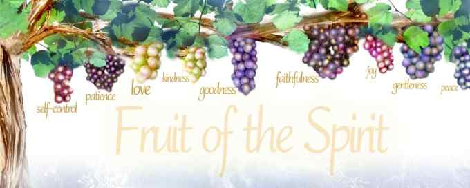 Image result for The Fruits of the Spirit