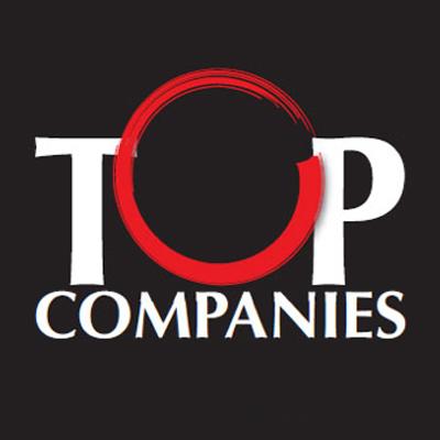 TopCompanies2013logo