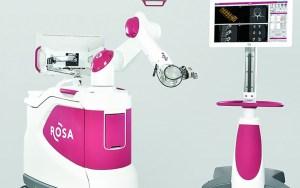 rosa-spine-pic-800x500_c
