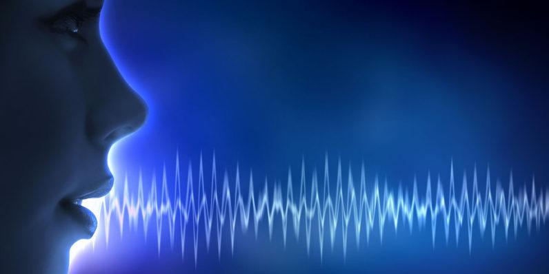 voice-796×398