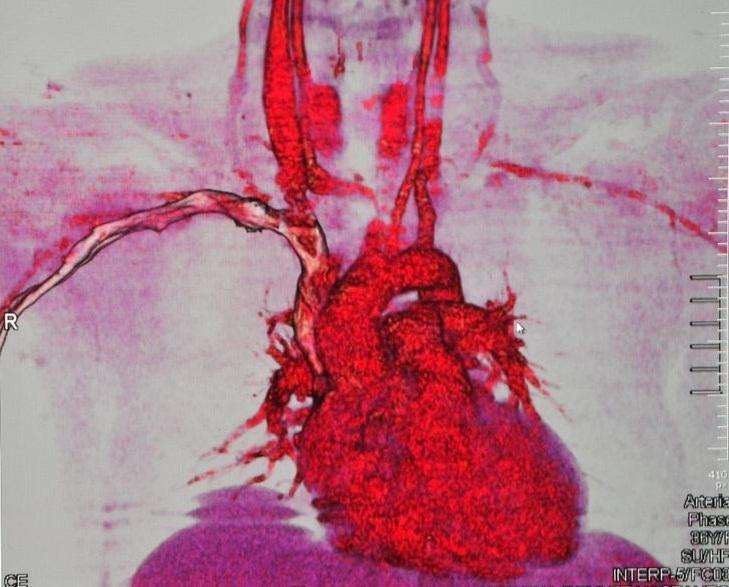 e87c86e6d774ddd1e93495f2d6e55609–medical-imaging-deep-learning