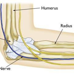 Ulnar Nerve Diagram Winch Wireless Remote Control Wiring Entrapment At The Elbow Cubital Tunnel Syndrome Path Of Through