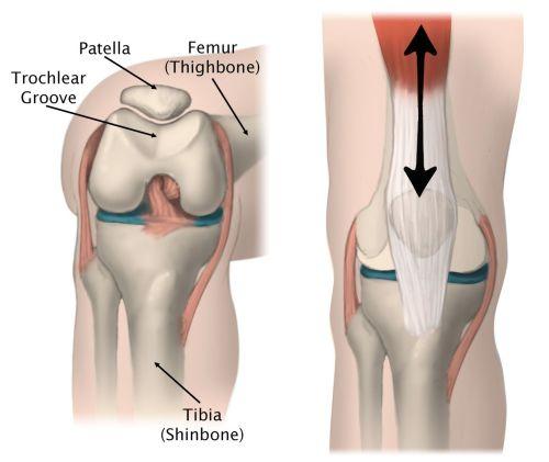 small resolution of kneecap function
