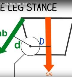 free body diagram hip joint [ 1165 x 707 Pixel ]