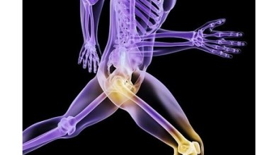 Photo of Sports Medicine Market is Anticipated to Witness Immense Growth: Knee and Hip Applications Accounted for Highest Revenue Share