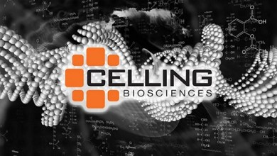 Photo of Celling Spine Acquires Assets of Link Spine to Further Develop and Promote a Cell Centric Spine Platform