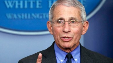 Photo of Fauci 'optimistic' about coronavirus vaccine candidates, says early testing 'looks quite promising'