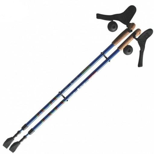 Палки для скандинавской ходьбы Ergoforce Е 0673