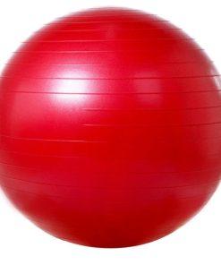 Мяч гимнастический гладкий с системой ABS Арт. VEGA-501/55
