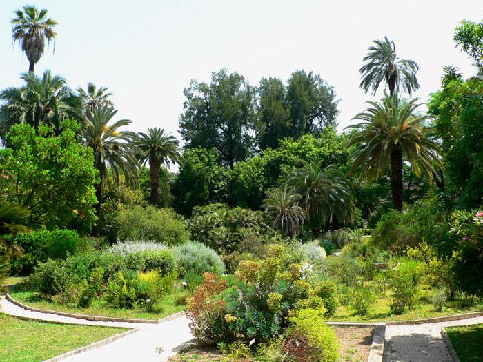Museo Orto Botanico, Sapienza Università Di Roma  Orto