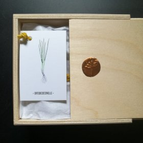 ortodicoccinelle-box-new-packaging