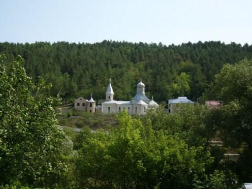 Manastirea-Cosauti