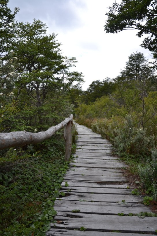 Nationalpark Tierra del Fuego