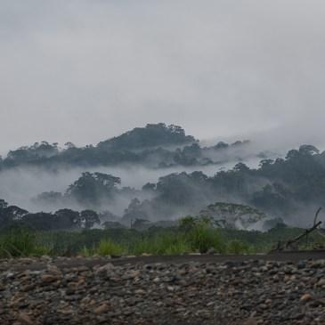 Bildergalerie Nationalpark Manu, Peru