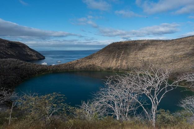 Tagus Cove - Isla Isabela