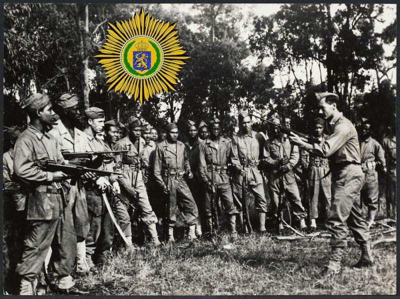 Narednik Kraljevske Holandske Istočno-Indijske Armije demonstrira vojnicima rukovanje puškom M1941 Johnson. Juli 1945.