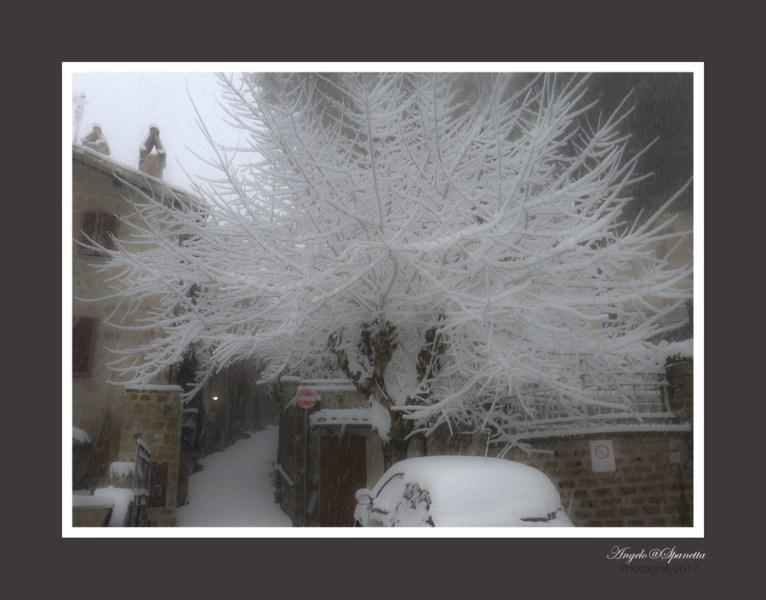 La nevicata vista da Angelo Spanetta