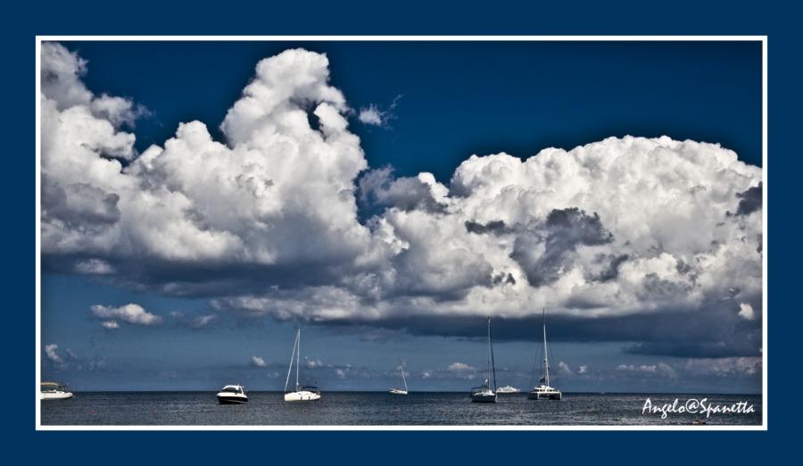 Mare, cielo, fauna e flora