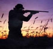Un'anomala caccia al cinghiale, in sei finiscono nei guai