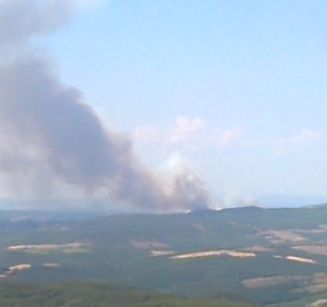 Incendio a Monteleone. Un vero disastro ambientale